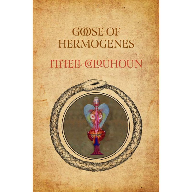 Goose of Hermogenes new illustrated edition by Ithell Colquhoun