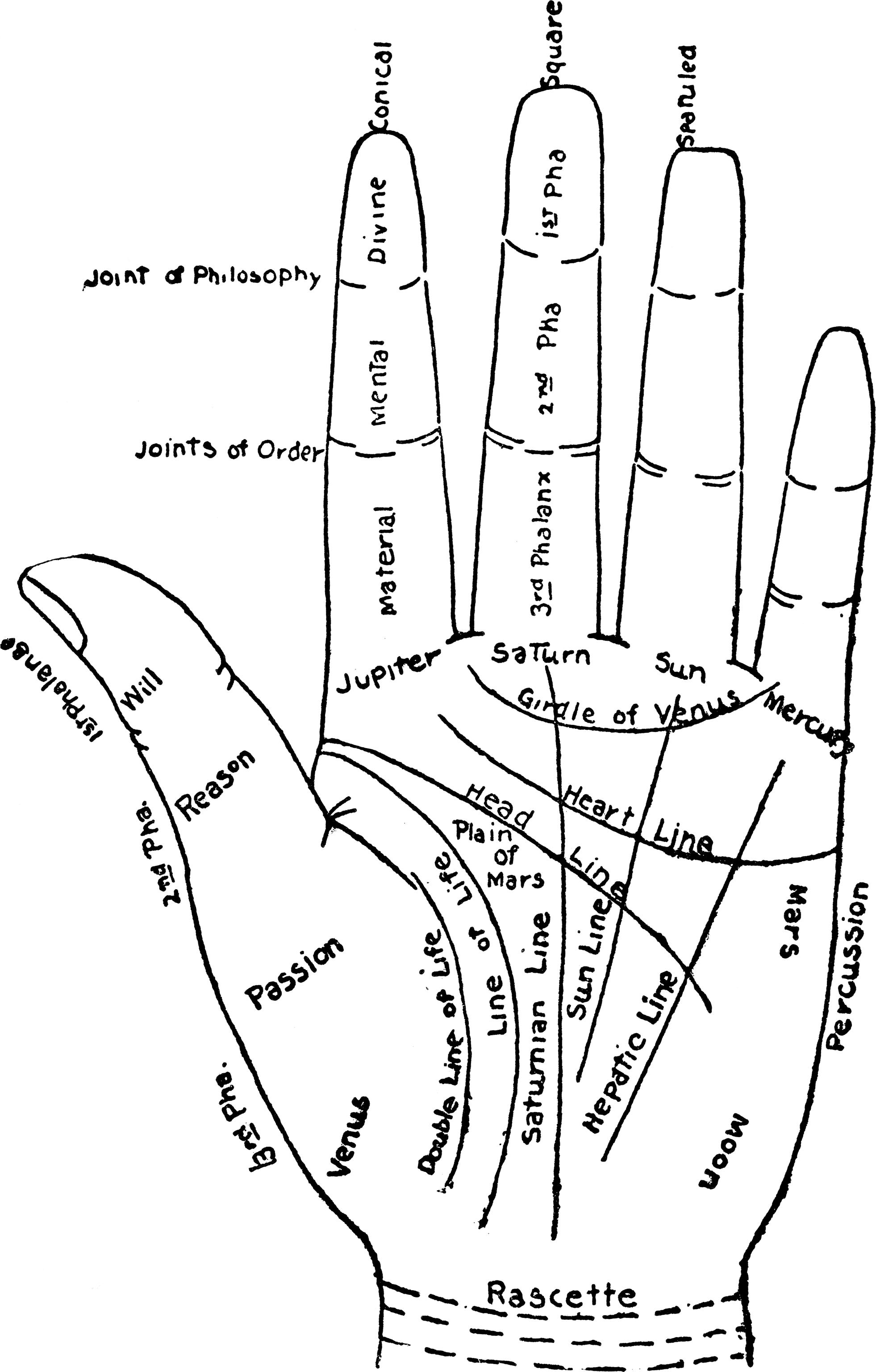 Rosemary friedman hands peter owen publishers biocorpaavc Choice Image